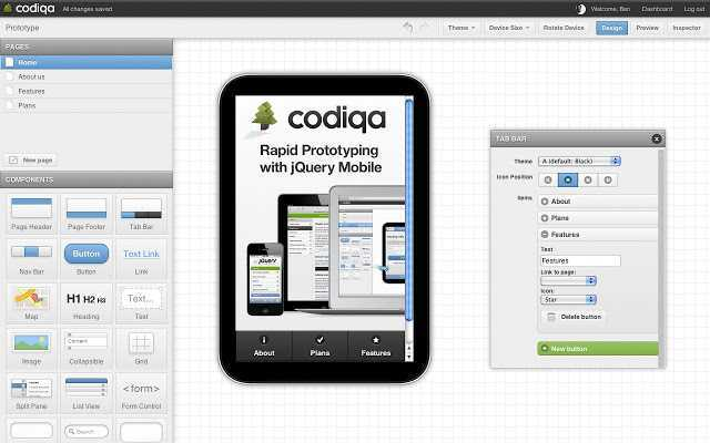 Codiqa Interface